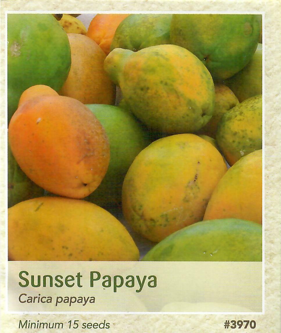 Sunset Papaya Seed
