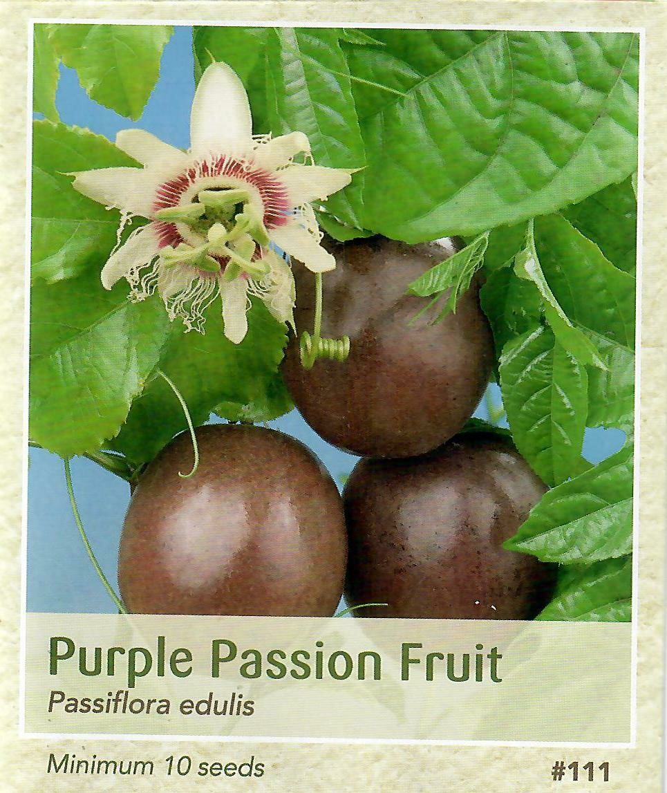 Purple Passion Fruit Seed