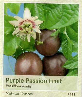Purple Passion Fruit Seed