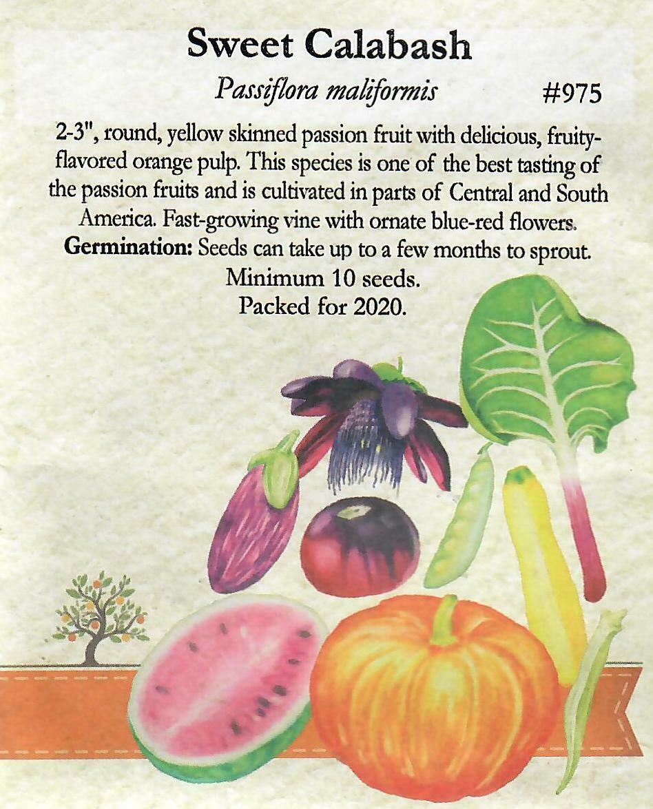 Sweet Calabash Seed