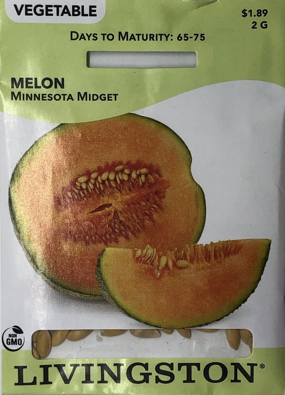 MELON - MINNESOTA MIDGET