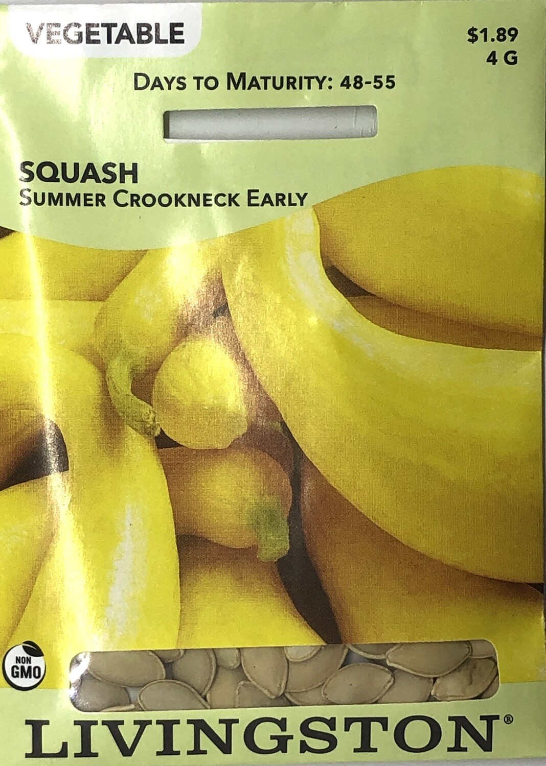 SQUASH - SUMMER CROOKNECK EARLY