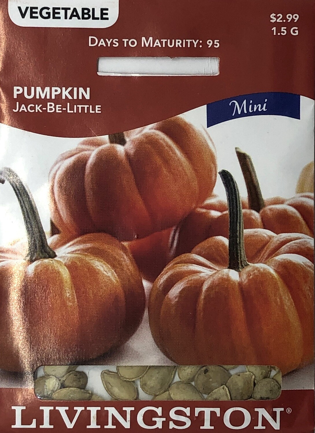 PUMPKIN - JACK-BE-LITTLE