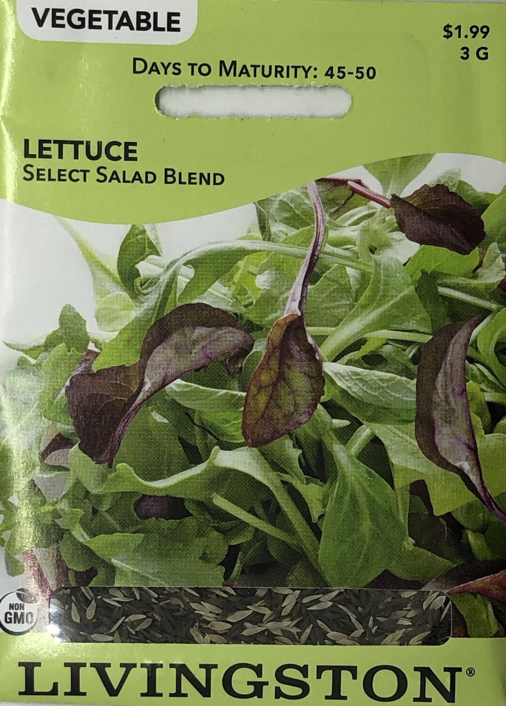 LETTUCE - SELECT SALAD BLEND