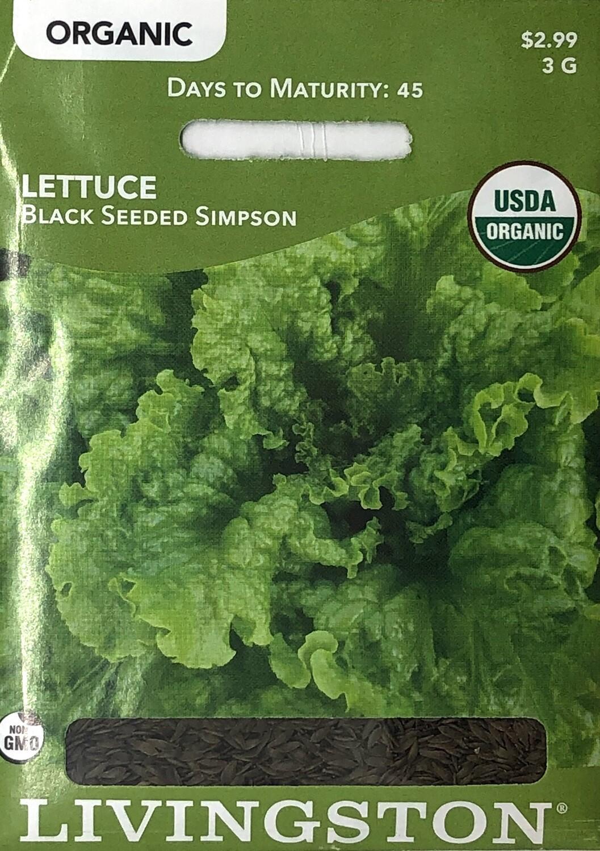 LETTUCE - ORGANIC - BLACK SEEDED SIMPSON