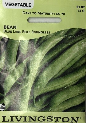 BEAN - BLUE LAKE STRINGLESS - POLE GREEN