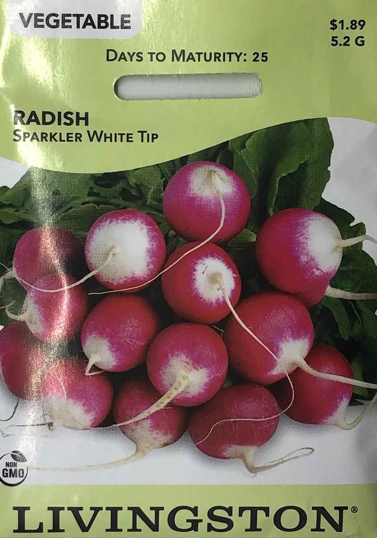 RADISH - SPARKLER WHITE TIP