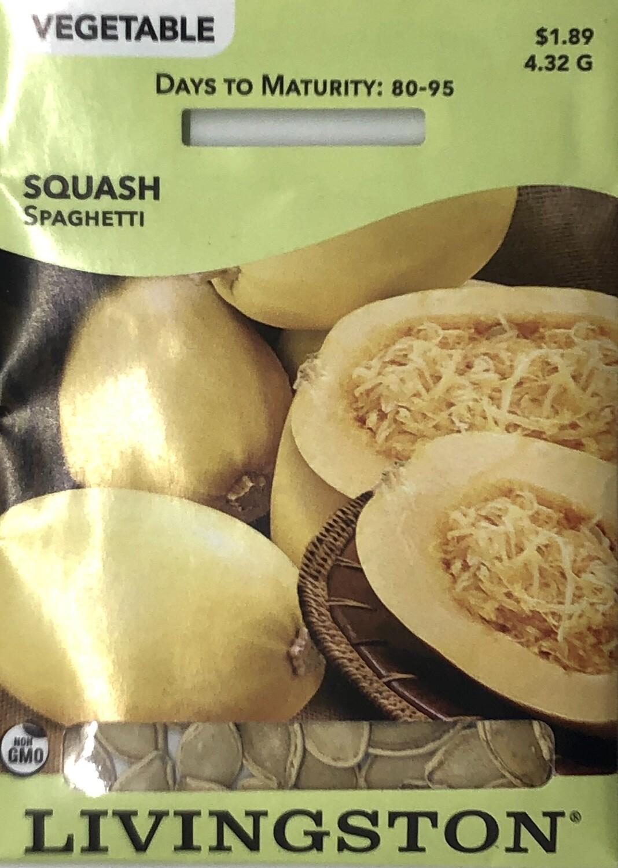 SQUASH - SPAGHETTI