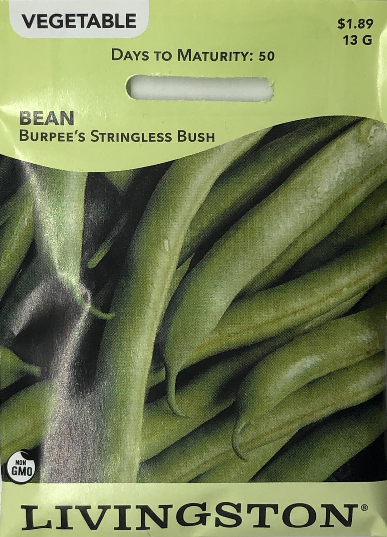 BEAN - BURPEE'S STRINGLESS - BUSH GREEN