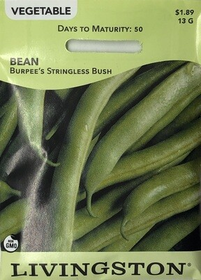 BEAN - BURPEE'S STRINGLESS - BUSH GREEN