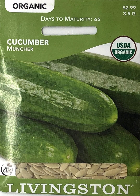 CUCUMBER - ORGANIC - MUNCHER