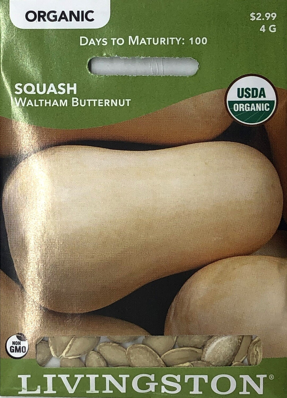 SQUASH - ORGANIC - WALTHAM BUTTERNUT