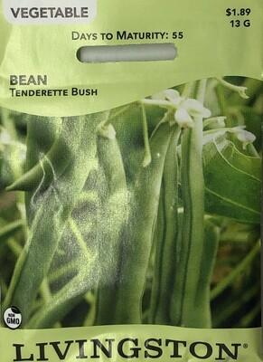 BEAN - TENDERETTE - BUSH GREEN