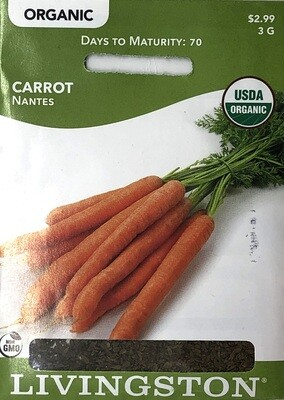 CARROT - ORGANIC - NANTES
