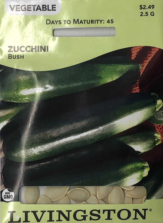 SQUASH - ZUCCHINI - BUSH