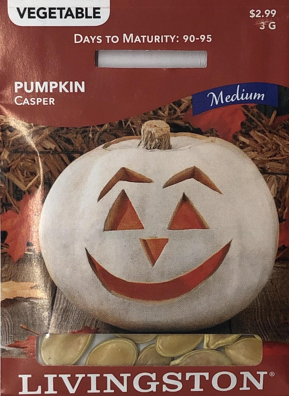 PUMPKIN - CASPER