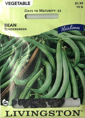 BEAN - HEIRLOOM - TENDERGREEN