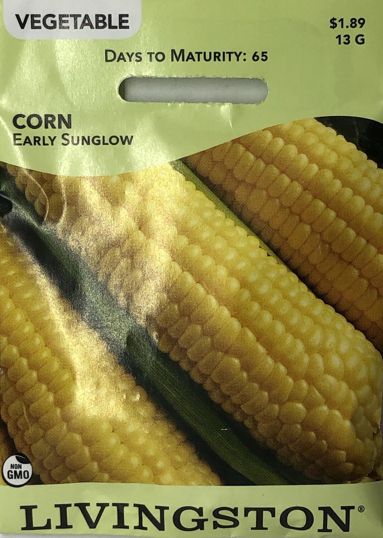 CORN - EARLY SUNGLOW