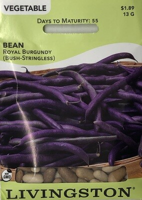 BEAN - ROYAL BURGUNDY - BUSH GREEN
