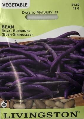 BEAN - ROYAL BURGUNDY - BUSH GREEN