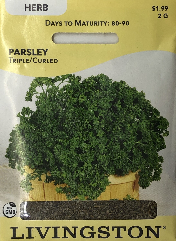 PARSLEY - TRIPLE/ CURLED