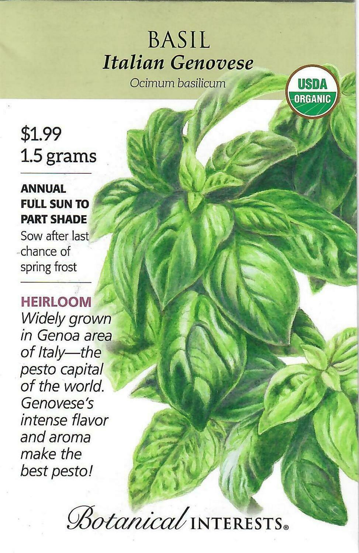 Basil Italian Genovese Org Botanical Interests