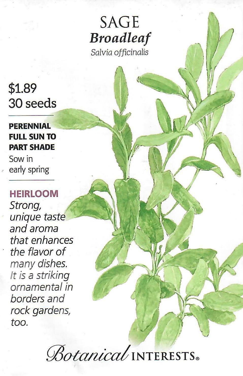 Sage Broadleaf Org Botanical Interests
