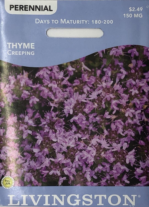 THYME - CREEPING