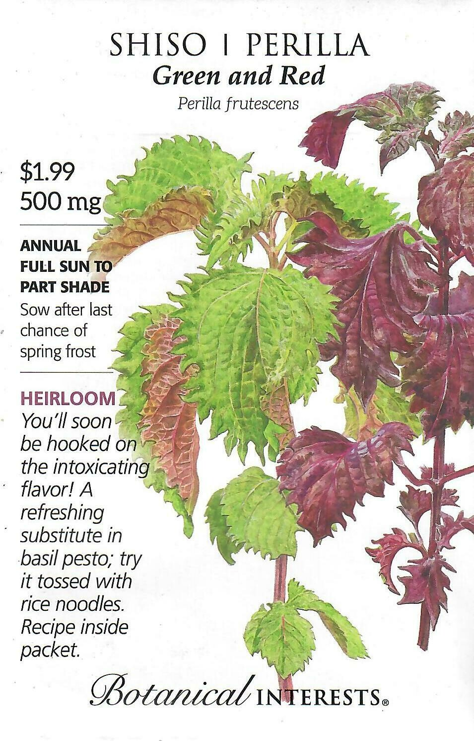 Shiso/Perilla Green & Red Botanical Interests