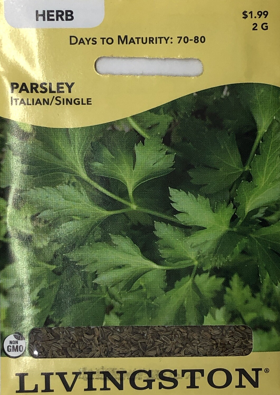 PARSLEY - ITALIAN/ SINGLE