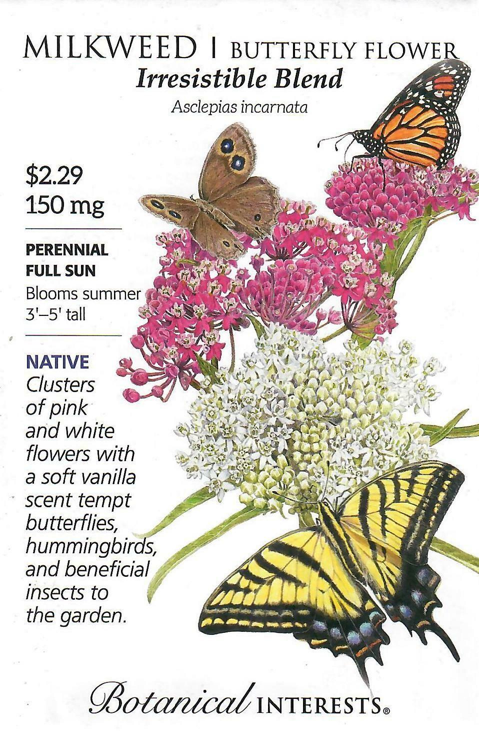 Milkweed Irresistible Blend Botanical Interests