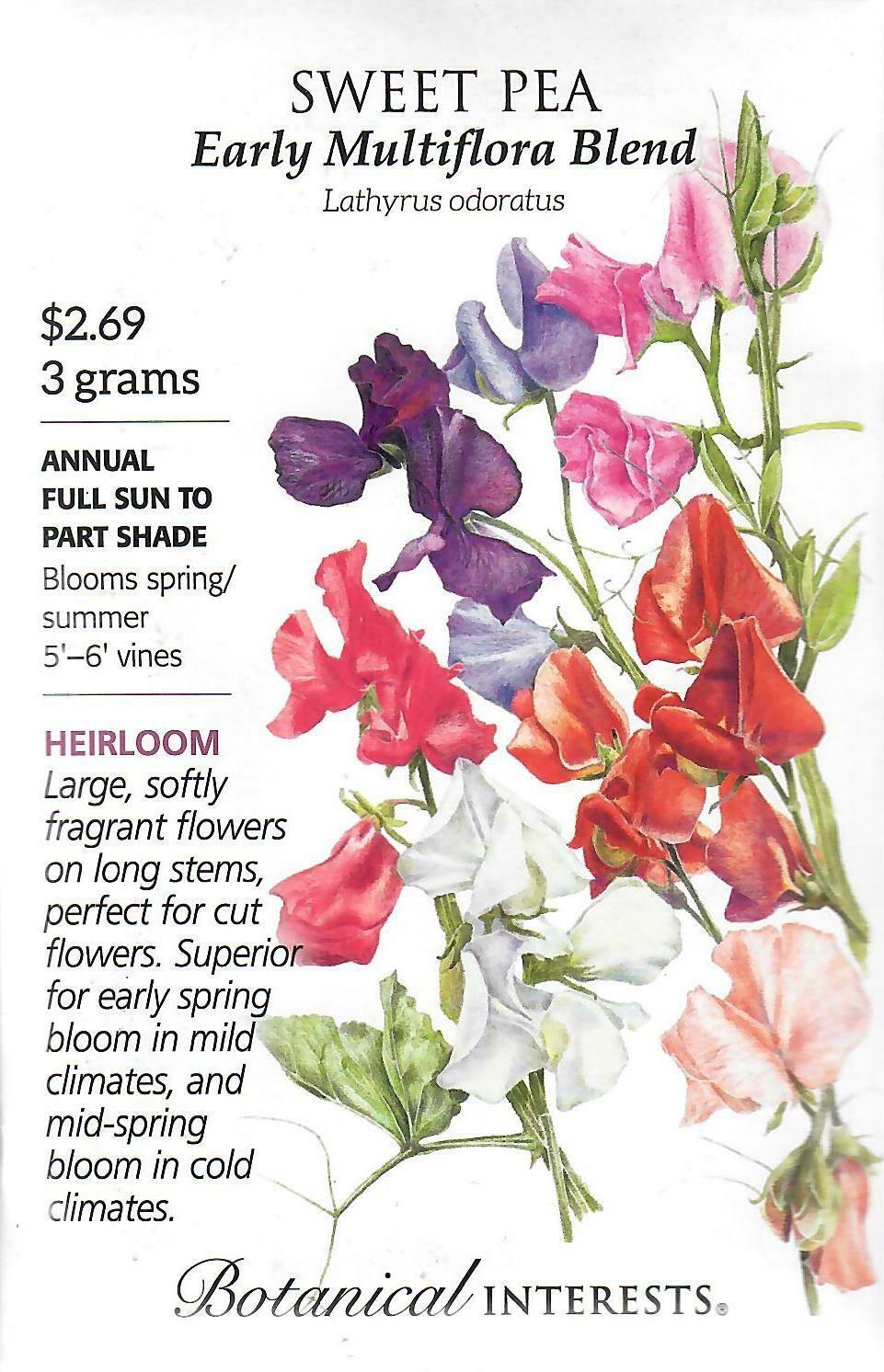 Sweet Pea Early Multiflora Blend Botanical Interests