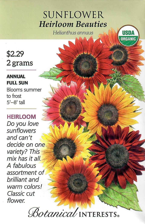 Sunflower Heirloom Beauties Org Botanical Interests