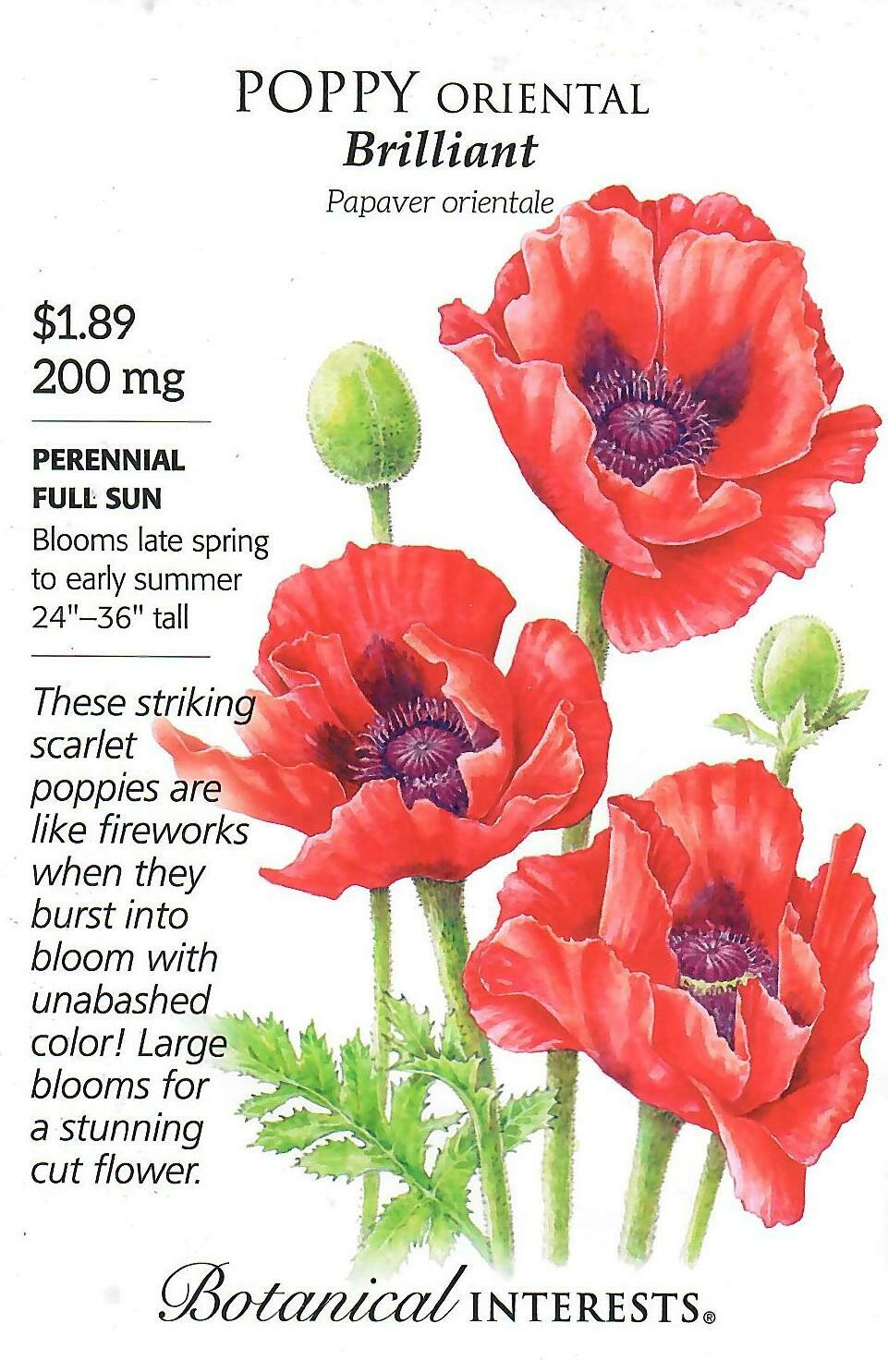 Poppy Oriental Brilliant Botanical Interests