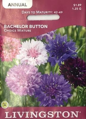 BACHELOR BUTTON - CHOICE