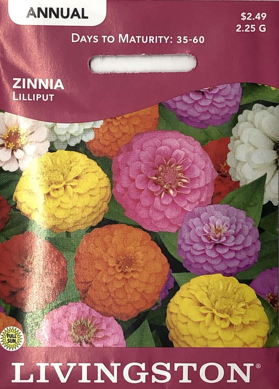 ZINNIA - LILLIPUT