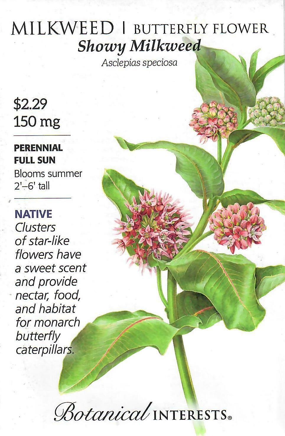 Milkweed Showy Botanical Interests