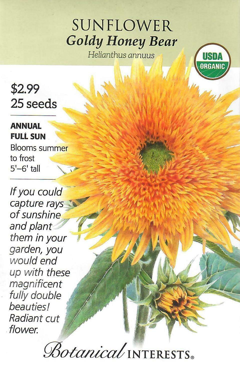 Sunflower Goldy Honey Bear Org Botanical Interests