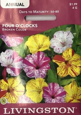 FOUR O'CLOCKS - BROKEN COLOR