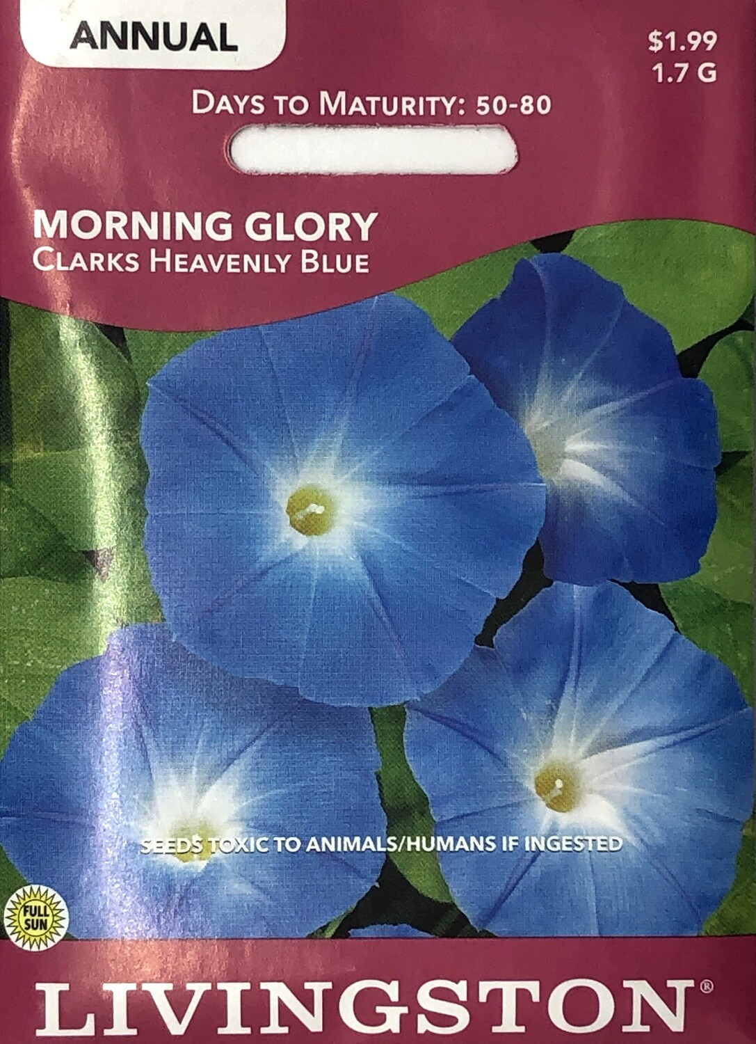 MORNING GLORY - CLARKS HEAVENLY BLUE