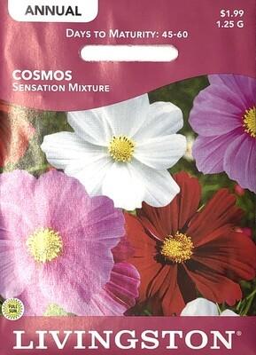 COSMOS - SENSATION MIXTURE