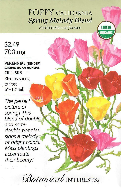 Poppy California Spring Melody Org Botanical Interests