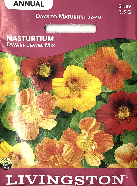 NASTURTIUM - DWARF JEWEL MIX