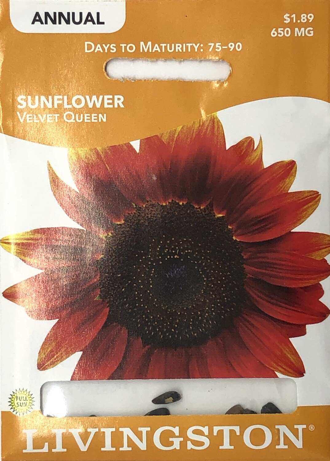 SUNFLOWER - VELVET QUEEN