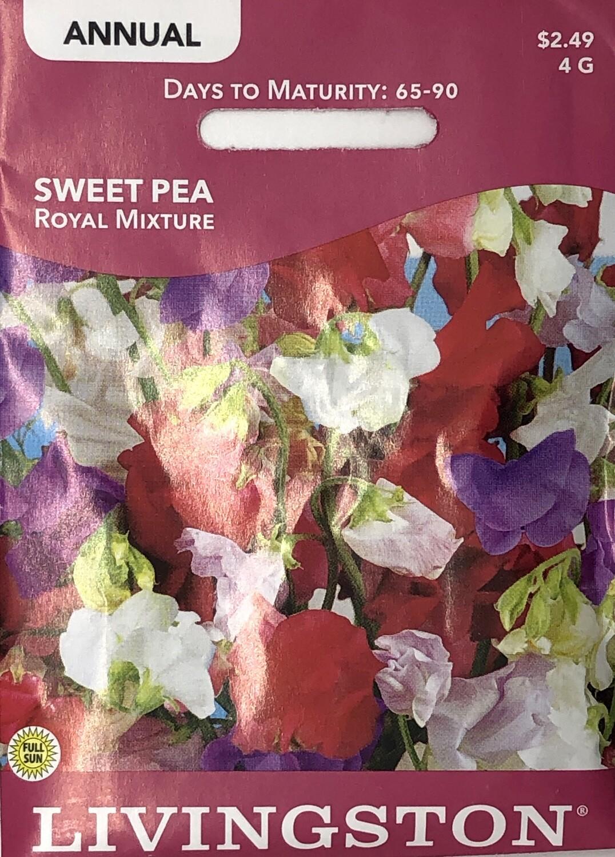 SWEET PEA - ROYAL  MIXTURE