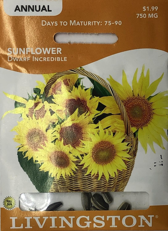 SUNFLOWER - DWARF INCREDIBLE