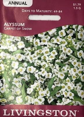 ALYSSUM - CARPET OF SNOW