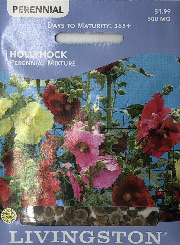 HOLLYHOCK - PERENNIAL