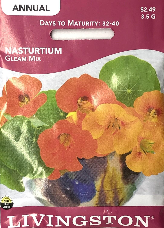 NASTURTIUM - GLEAM MIX