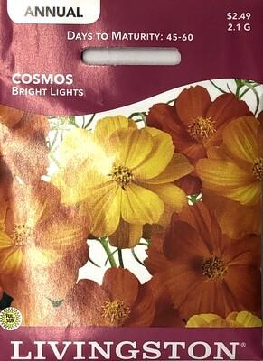 COSMOS - BRIGHT LIGHTS
